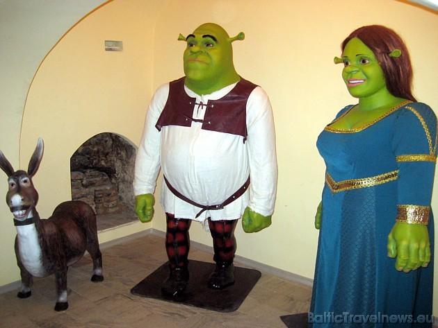 Bērnu iemīļotie personāži - Šreks un Fiona