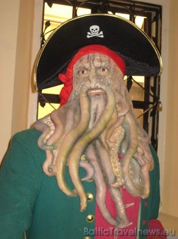 Karību jūras pirāts