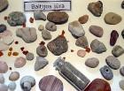 Baltijas jūrā sastopamie ieži un moluski 11