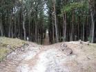 Kuršu nērijas nacionālā parka ainava 14