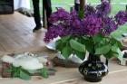 Siernieku nams – tā ir cilvēku, kas iecienījuši ēdienu, laukus, dabu un jauku kopā būšanu 3