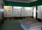 Rokišķus muižā tagad ir izveidots Rokišķu novada muzejs 11