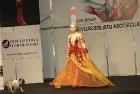 Skaistumkopšanas izstādes «Baltic Beauty 2012» konkursi  - «Body art 2012» un asociatīvā tēla konkurss. Foto sponsors: www.startours.lv 17