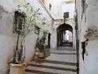 Jauka pastaiga pa šaurajām ieliņām, izbaudot īpašo arābisko vidi 46