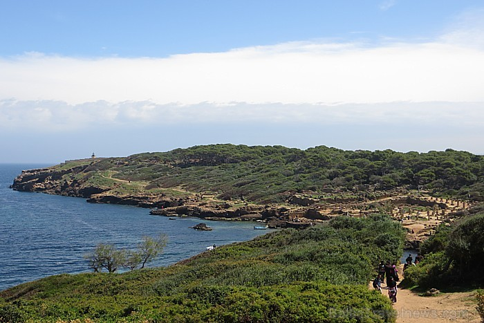 Tipaza atrodas 80 km uz rietumiem no Alžīras. Pilsēta slavena ar pūniešu un romiešu laika drupu kompleksu un tās tuvumā esošajām smilšu pludmalēm