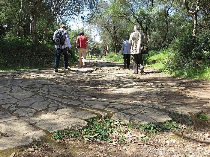 Kurš gan to pateiks, cik cilvēki ir pa šo veco ceļu staigājuši?