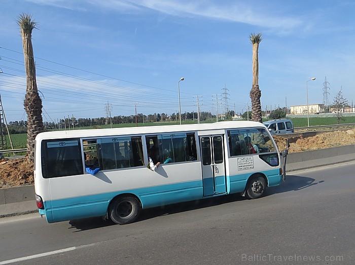Starp Alžīrijas pilsētām ērti var pārvietoties, izmantojot autobusus. Degvielas cenas ir pietiekoši zemas (benzīns ~20.sant./l; dīzelis ~8 sant./l), l