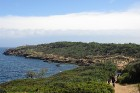 Tipaza atrodas 80 km uz rietumiem no Alžīras. Pilsēta slavena ar pūniešu un romiešu laika drupu kompleksu un tās tuvumā esošajām smilšu pludmalēm 1