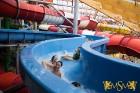 Jaunieši apmeklēs moderno ūdensatrakciju parku Aquapalace Prague un varēs izbaudīt dažādas atrakcijas, relaksēties saunā, aplūkot krāsaino koraļlu akv 11