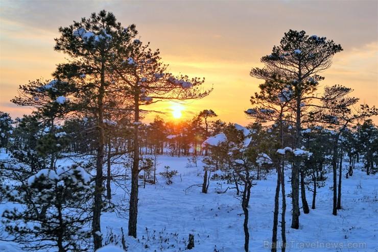 Jūrmalā apskatāmi burvīgi ziemas skati
