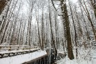 Jūrmalā apskatāmi burvīgi ziemas skati 6
