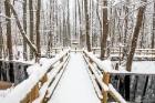 Jūrmalā apskatāmi burvīgi ziemas skati 8