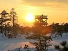 Jūrmalā apskatāmi burvīgi ziemas skati 11