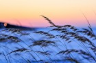 Jūrmalā apskatāmi burvīgi ziemas skati 13