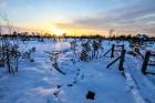 Jūrmalā apskatāmi burvīgi ziemas skati 14