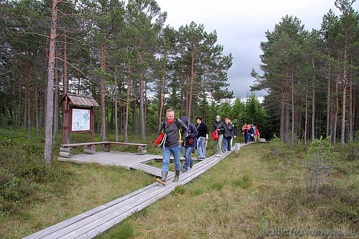Somā (Soomaa) nacionālais parks ar Ingatsi taku atrodas Igaunijā, Viljandi apgabalā, Sandra ciemata tuvumā 47686