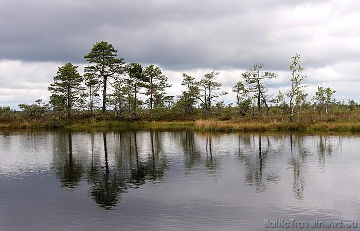 Somā Nacionālais parks ir konkursa Igaunijas neatklātie dārgumi 2009 uzvarētājs, tas ir saņēmis Eiropas neskarto teritoriju PAN Parks statusu 47700