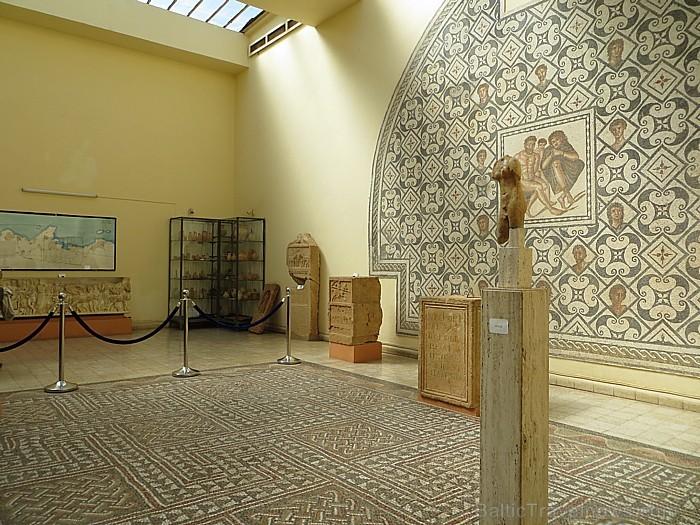 Tipazas muzejā atrodas vērtīgi atradumi no romiešu laikiem, tai skaitā arī dažādas mozaīkas 93333