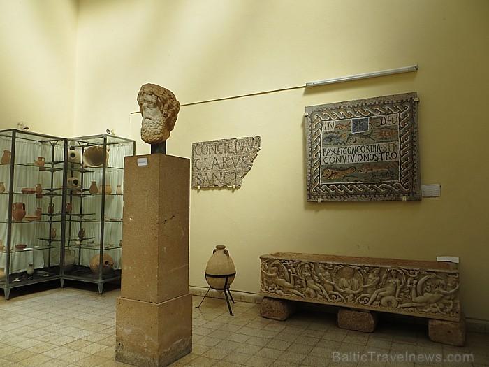 Tipazas muzejs lepojas ar grezni rotātiem sarkofāgiem, mājsaimniecībā un skaistumkopšanā izmantojamiem priekšmetiem, kā arī skulptūrām 93334